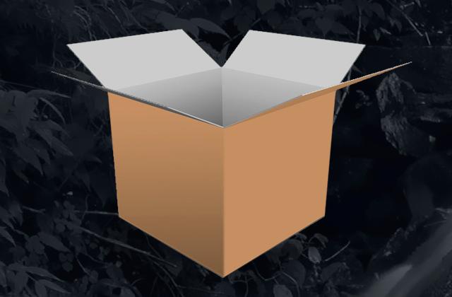 cardboard-box2